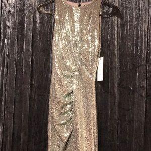 Zara Mermaid Sequins Dress